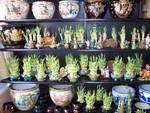 Bambo and pots