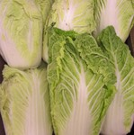 Napa cabbage (kimchi cabbage-baechu)   available by the case or by the pound